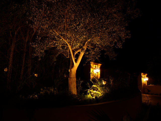 Hidden Hills Outdoor Lighting